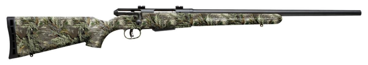 Savage 25 .223 Remington 19980