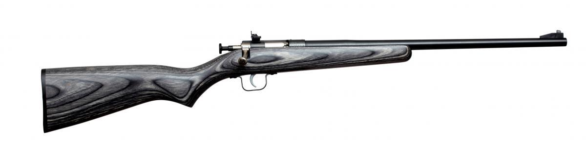 Keystone Sporting Arms Crickett 22 LR KSA2244
