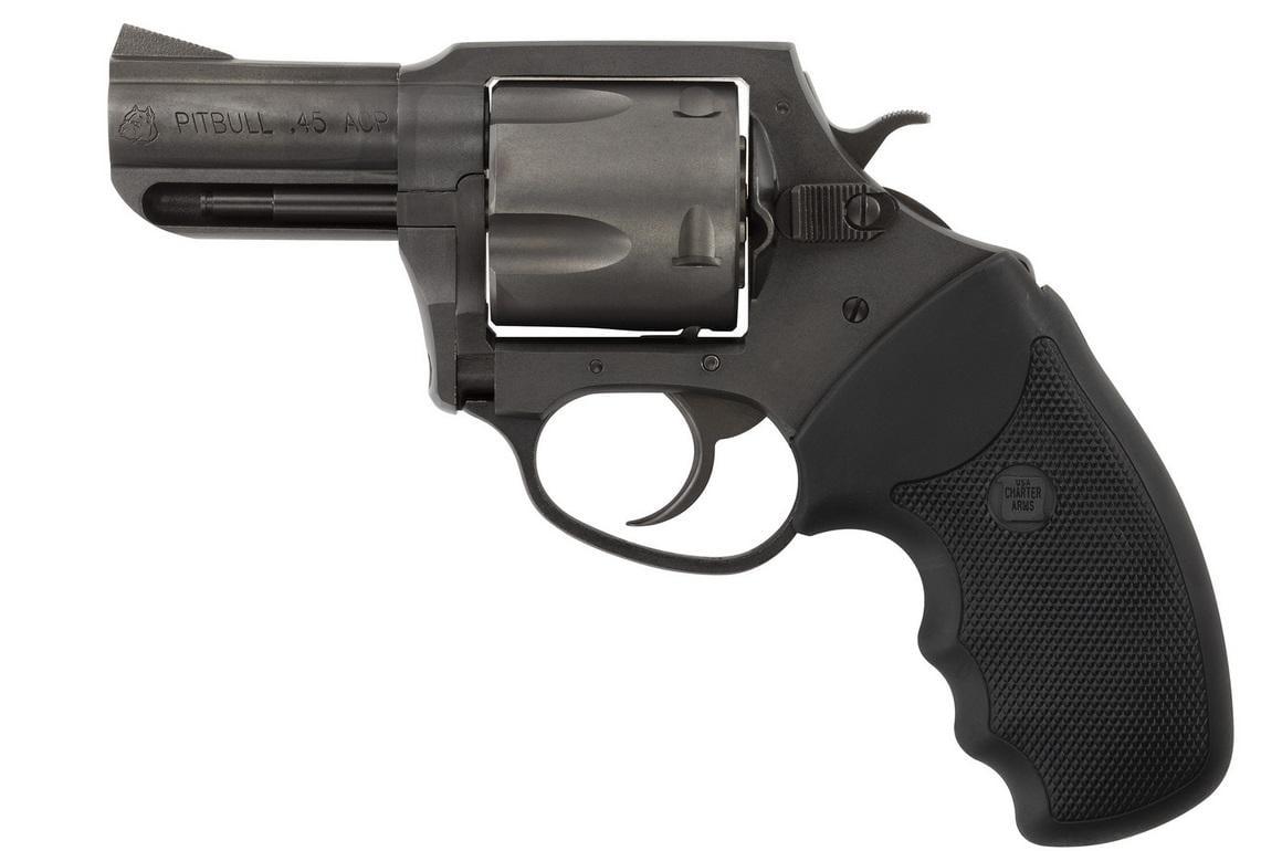 Charter Arms Pitbull 45 ACP 64520