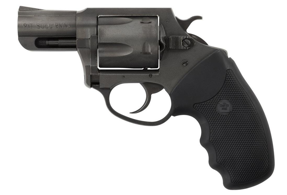 Charter Arms Pitbull 9mm 69920