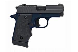 SIG SAUER P238 Navy Series - Talo Edition 380 798681550166
