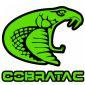 cobratac's picture
