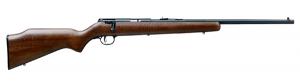 Savage Arms 22LR 17000 006823145475