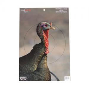 Birchwood Casey Casey 35403 PreGame Turkey 12-inch x18-inch 35403