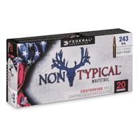Federal Non-Typical, .243 Winchester, SP, 100 Grain, 20 Rounds 243DT100